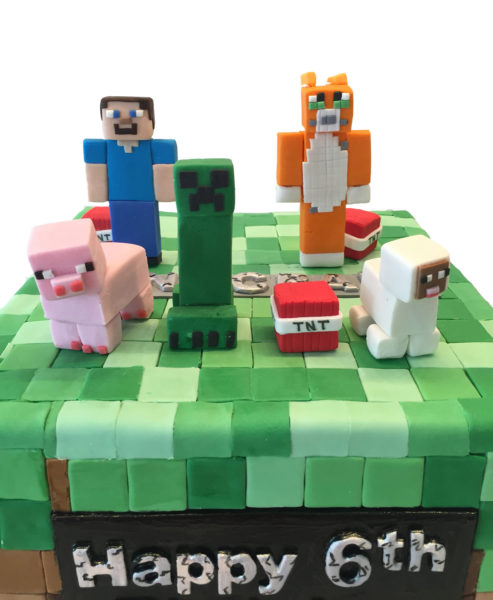 Minecraft style birthday cake for James